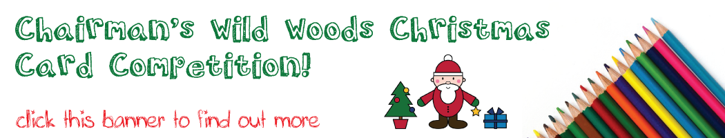 Chairman's Wild Woods Christmas Card Competition