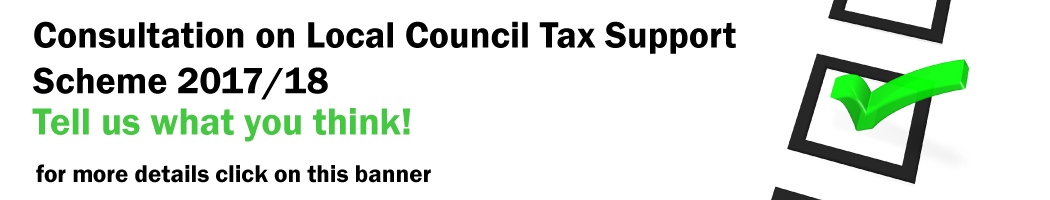 Local Council Tax Support Scheme - 2017/18